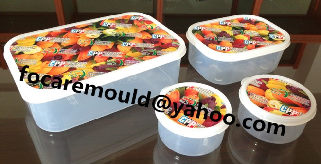 China IML food container mold